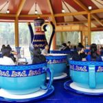 Tea Cup Ride for Sale in Nigeria