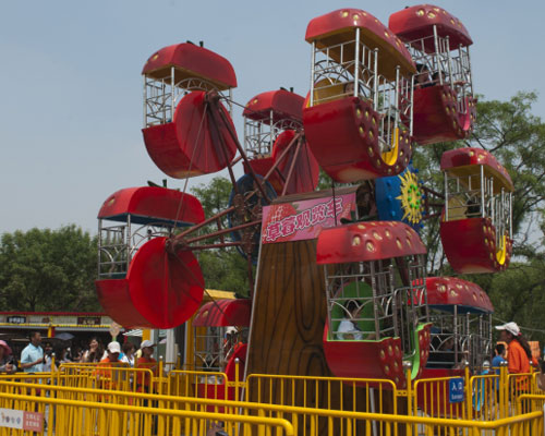 kids ferris wheel for sale