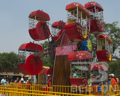 double ferris wheel for sale
